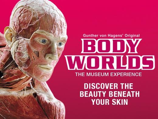Body Worlds London, London Pavilion