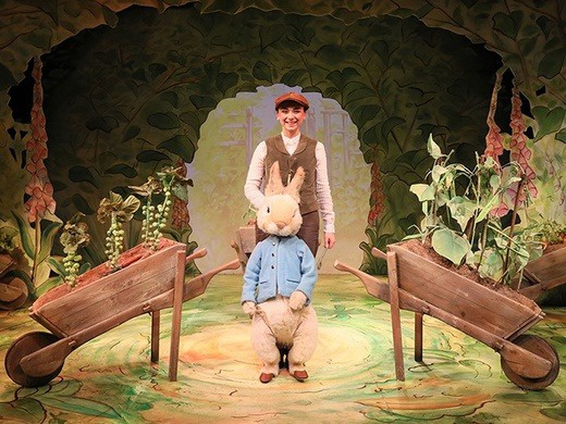 Where is Peter Rabbit?-
