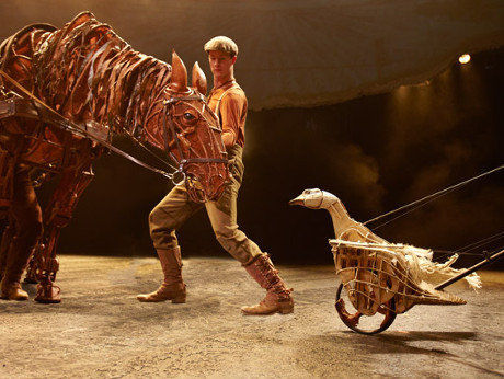 war horse coursework A lesson guiding students through chapter 15, includes creative writing skills as a  starter and ao3 comprehension activities on life in the.