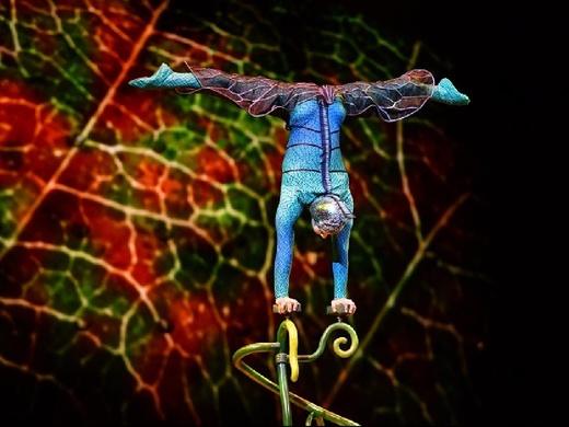 Cirque Du Soleil: OVO - London 2018#1