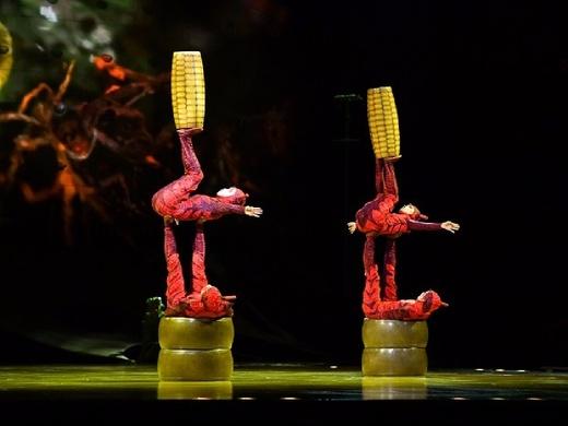 Cirque Du Soleil: OVO - London 2018#2