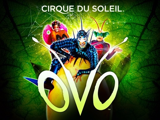 The children's discount applies to children 2 (3 in Japan) to 12 years old. Children under 2 years old (3 in Japan) are permitted to attend for free, but must remain seated on a parent's lap at all times. Children are not permitted to be left unattended on the site of Cirque du Soleil. Tickets purchased for children must have an adult seated beside.