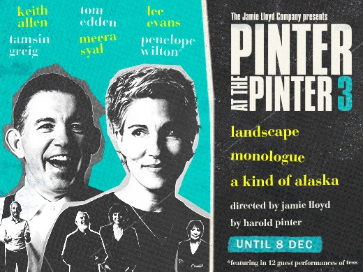PINTER THREE - Landscape / A Kind of Alaska / Monologue