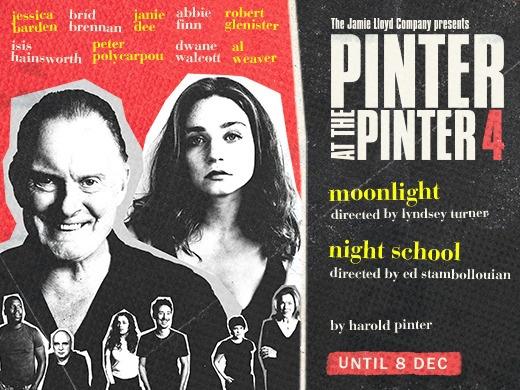 PINTER FOUR - Moonlight / Night School