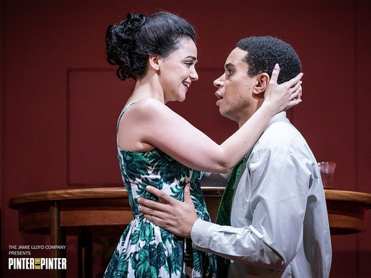 PINTER TWO - The Lover / The Collection-