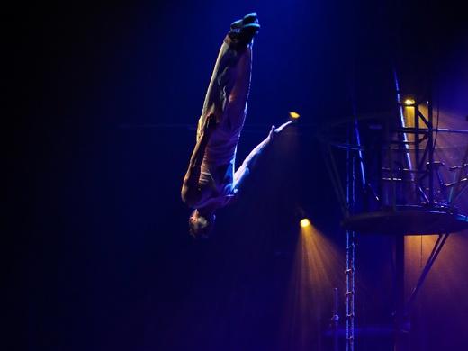 Circus 1903-