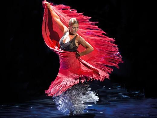 Ballet Flamenco Sara Baras — Sombras