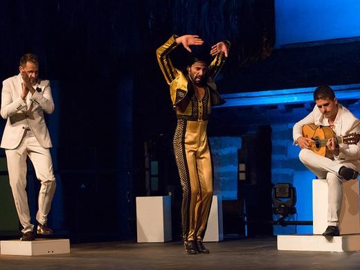 Gala Flamenca