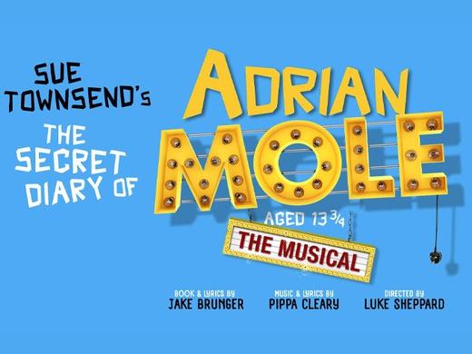 The Secret Diary of Adrian Mole-